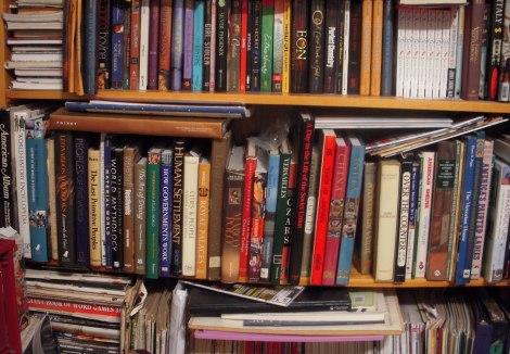 bookshelf1-2010