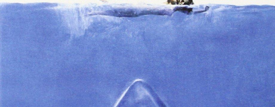 """""""Tiburón"""""""