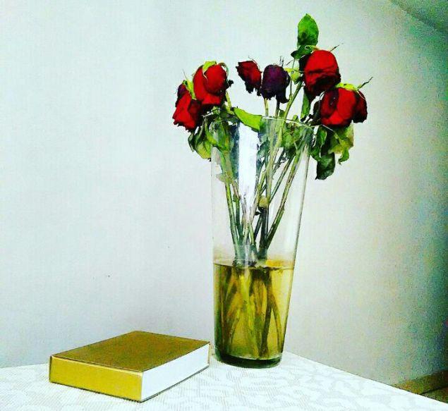 Rosas y Libro