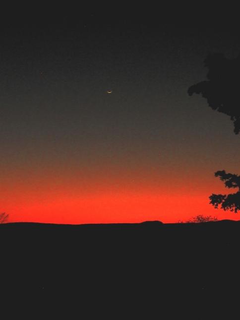 constelación_171116_074746 culiacan.jpg